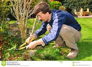 The Gardener Gardener Stock Photo Image Of Green Manual Worker