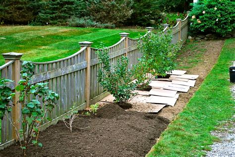 backyard garden fence backyard fencing ideas homesfeed