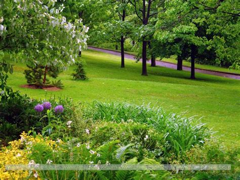 Description Of A Beautiful Garden Beautiful Green Garden Wallpaper