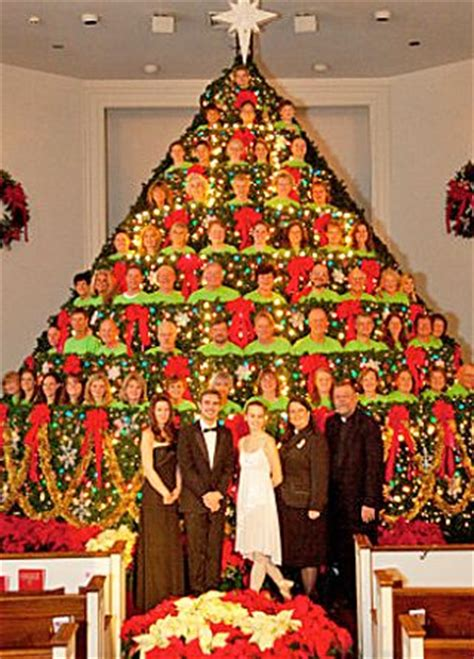 holiday living christmas gumdrop tree living tree parade among best bets