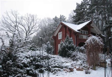 winter backyard 21 beautiful winter gardens with snow capped plants and