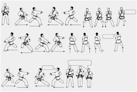 karate design form 1 instructional videos of traditional forms tang soo do