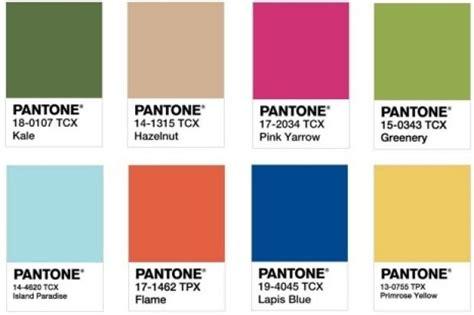 choose  pantone colour   year