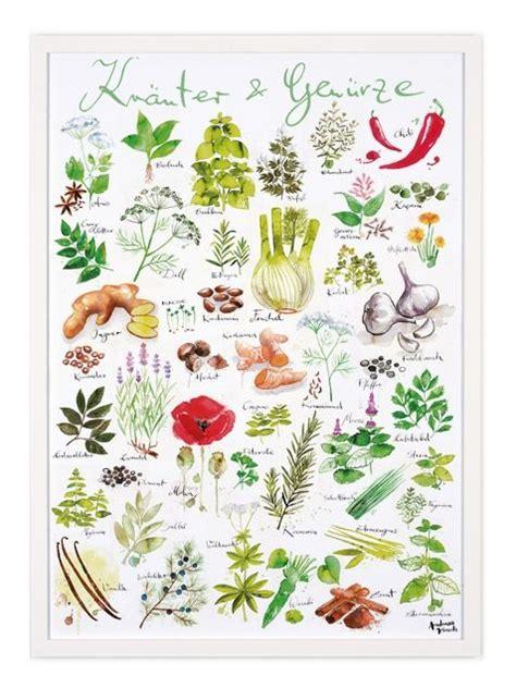 Pflanzen Im Bestellen 1544 by Die Besten 17 Ideen Zu K 252 Chenposter Auf