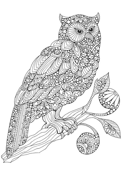 stay pawsitive cat coloring book for adults relaxing and stress relieving cat coloring pages coloring books volume 4 books 259 best kleurplaten owls images on coloring