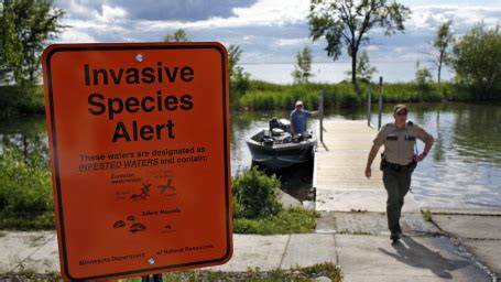 minnesota boat drain plug law new law requires residents to drain boats startribune