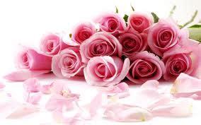 Gamis Roseflowry roses png everyday