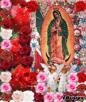 imagen virgen de guadalupe con rosas imagenes de rosas con animaciones de la virgen de guadalupe