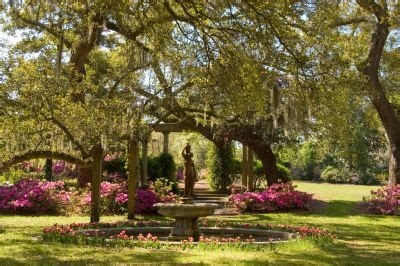 while in wilmington nc take a day trip to airlie gardens!