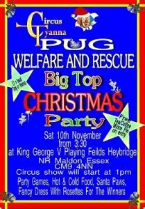 pug rescue essex the pug welfare and rescue charity event 2012 essex uk