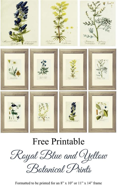 printable wall art free printable alert botanical gallery wall art live