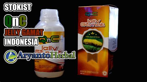 qnc jelly gamat indonesia teripang emas