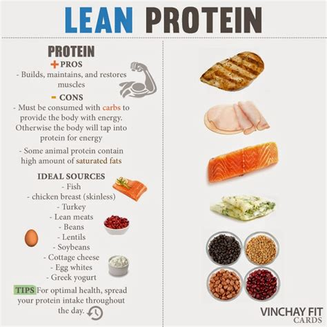 protein list list of lean proteins phase one logo