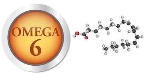 omega 6 in quali alimenti omega 6 elementi essenziali per il corretto sviluppo di