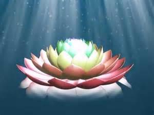 Lotus Animation Lotus Flower Animation