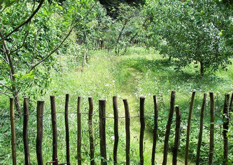 kleiner nutzgarten obstgarten tipp trennung vom gem 252 se