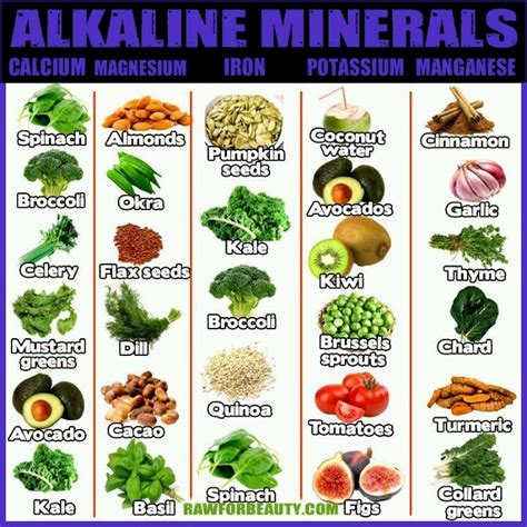 Foods Detox And Alkalize by 1000 Images About Alkaline Foods Ph Levels Herbal