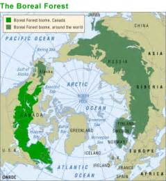 boreal forest canada map the alberta wildfire heating up the blogosphere