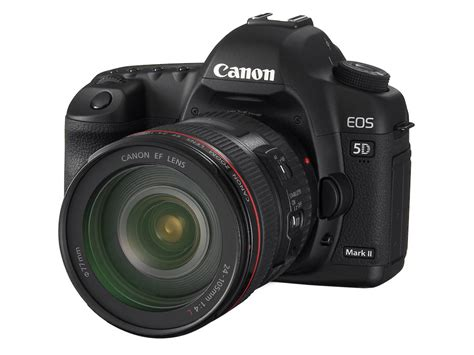 canon eos 5d ii canon 5d ii soft focus due to or lens raoul pop