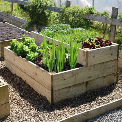 Small Raised Bed Vegetable Garden Layout