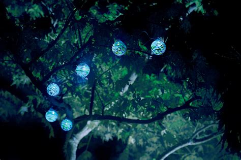 Outdoor Tree Lights Solar 1000 Images About Solar Lights Garden Accents On Pinterest