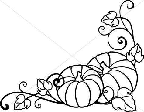 coloring pages of pumpkin vines pumpkins and vines lineart harvest day clipart