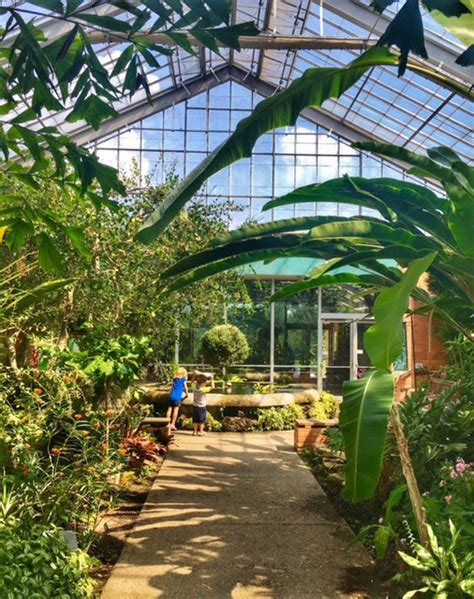 Matthaei Botanical Gardens Conservatory Lists For Michigan Places Archives Mrs Weber S Neighborhood