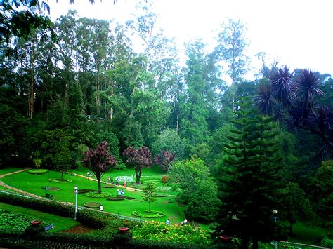 Ooty Travel Amazingindiaholidays Botanical Garden Of India