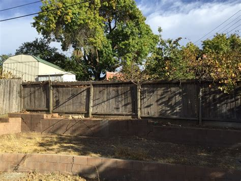backyard clearing backyard clearing tree removals and brush clearing 183 sacramento s best tree care
