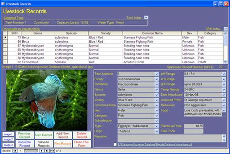 bid to win software aquarium image database maintenance software cdrom for