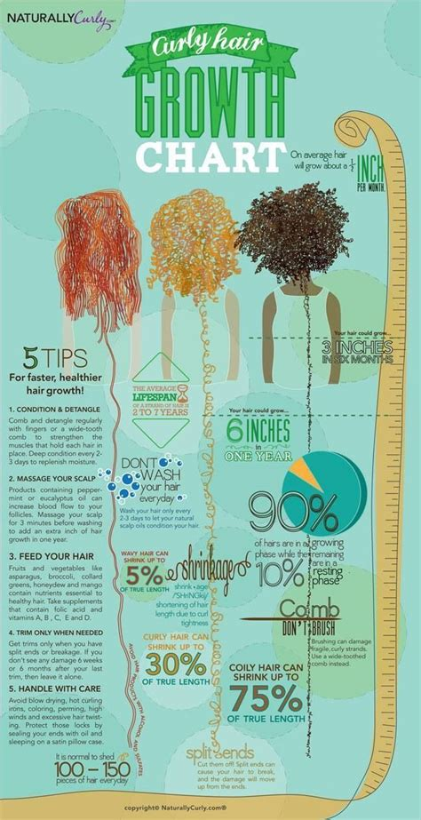 Hair Detoxing Or Moistureoverload by 25 Best Ideas About Hair Type Chart On