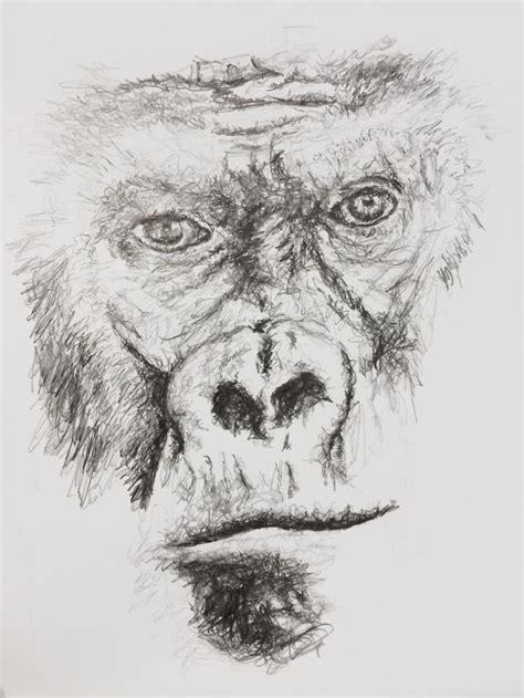 tattoo drawings in pencil gorilla sketch portrait pencil miami magazine