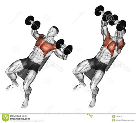 shoulder pain during incline bench press my shoulders get exhausted before chest while doing chest