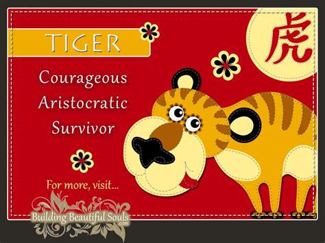 new year tiger zodiac zodiac tiger year of the tiger