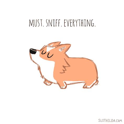 Log Finds Monday Speedy Links by Slothilda Gif Find On Giphy