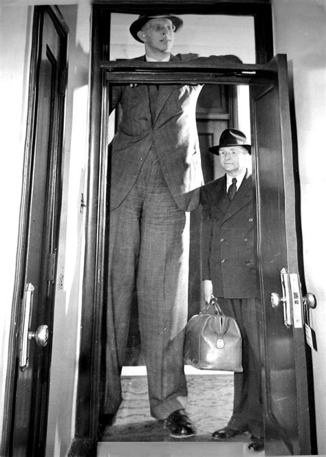 8 feet in inches robert wadlow is 8 feet 9 1 2 inches tall his father is