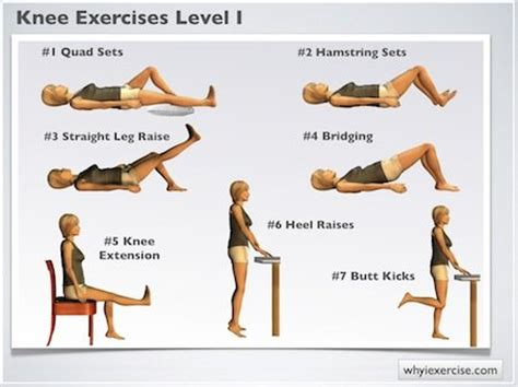 therapy exercises knee exercises illustrated therapeutic strengthening
