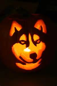 dog pumpkin carving stencils dog breeds picture