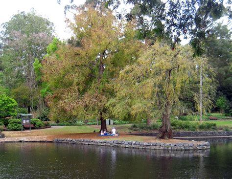 Botanical Gardens Cafe Brisbane Brisbane Botanic Gardens Cafe The Gardens Club At City Botanic Gardens Brisbane Brisbane City