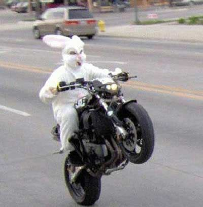happy easter motorcycle photographs and images