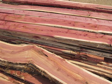 woodchuck sawmill lumber llc