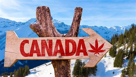 Mba In Tourism In Canada by When Will The Us Border Patrol Stop Banning Canadians Who