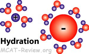 hydration a level chemistry image gallery solvation chemistry