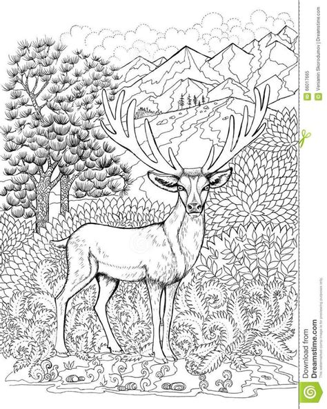 deer coloring page for adults 294 best coloring deer images on pinterest adult