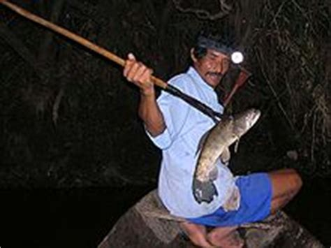 fishing with spear speervissen