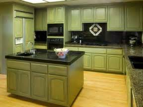 Green Kitchen Cabinet kitchen green cabinets for kitchen painted green kitchen