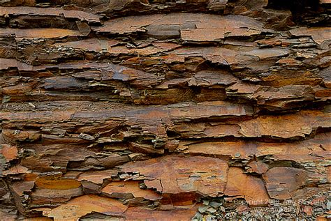 Garden Shale Rock Shale Rock Flickr Photo