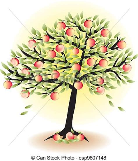 fruit tree drawing vector of fruit tree with leafs and apples isolated on