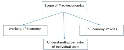 Scope Of Mba In Import And Export by Managerial Economics Guide
