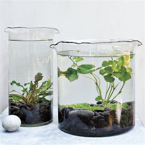 15 diy indoor water garden ideas home design and interior